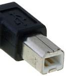 USB printer plug