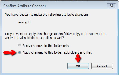 EFS-encrypt-confirm-attribute-changes