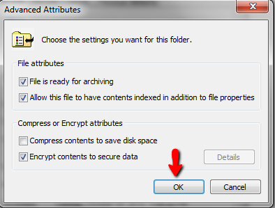 EFS-file-name-tick-box-advanced-attributes